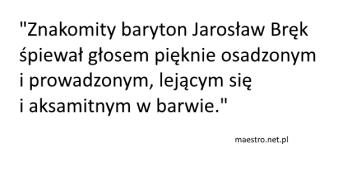maestro.net.pl